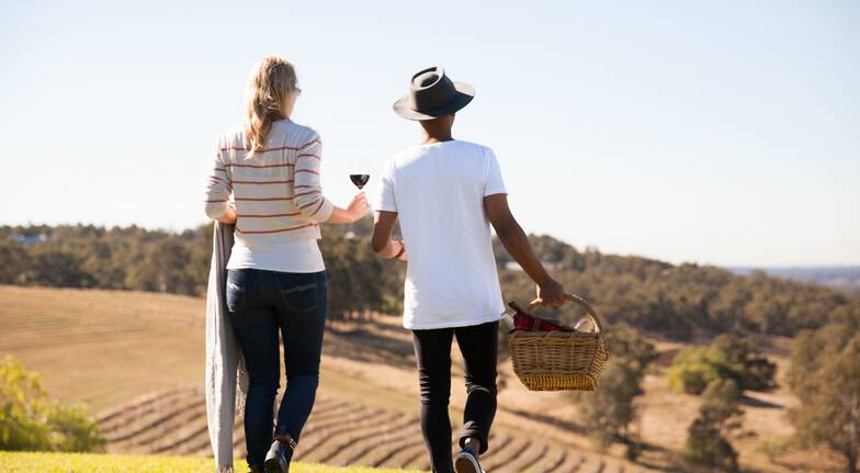 Picnic Among the Vines with Wine Tasting Masterclass  For 2