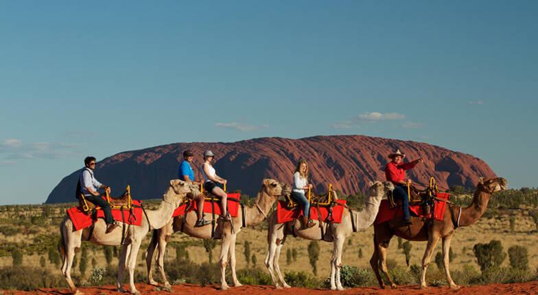 Sunrise Camel Ride - 60 Minutes