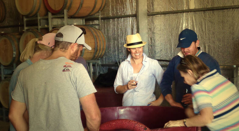 Be The Winemaker: Make Your Own Premium Wine - For 8