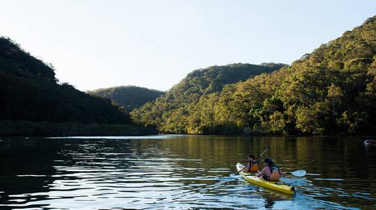 Guided Kayak Tour with Bushwalking - Half Day