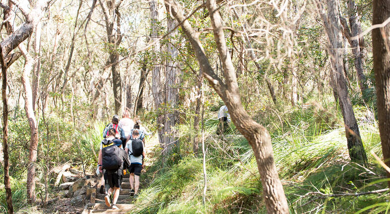 Paddlecraft group bushwalking on trail in pittwater sydney