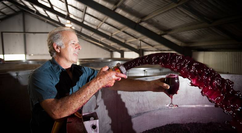Barossa Valley Private Winery Tour - For 2
