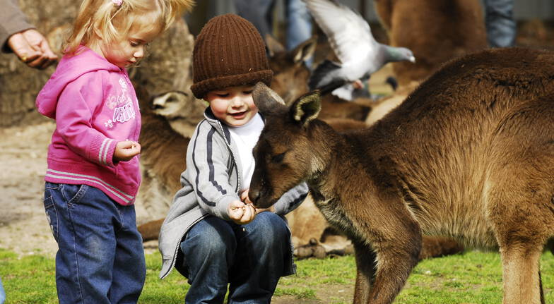 Sovereign Hill Tour with VIP Wildlife Encounter - Adult