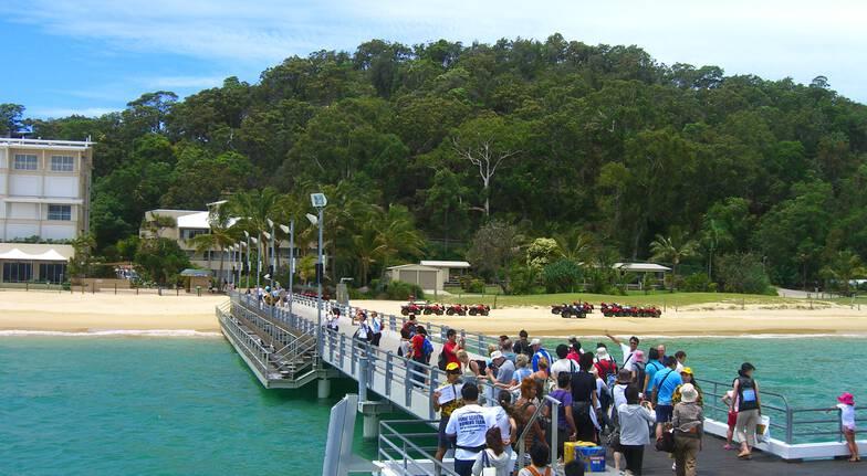 Moreton Island with Dolphin Feeding - Child- dept Gold Coast