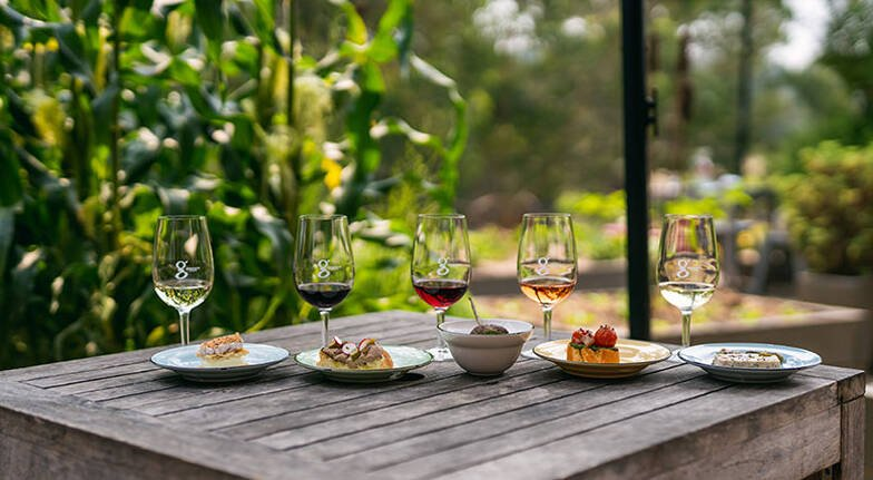 Food and Wine Matching Experience