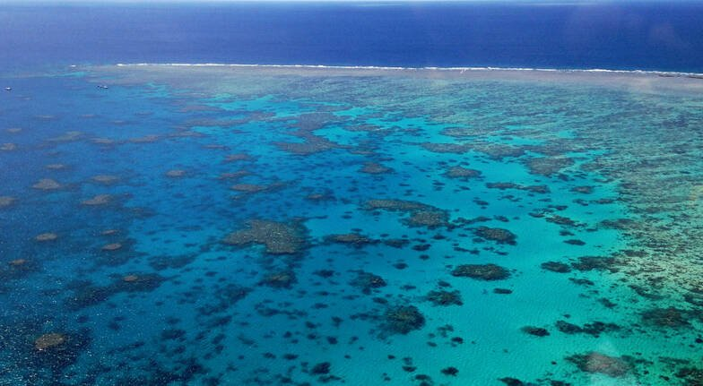 Great Barrier Reef Hopper Scenic Flight - 40 Minutes