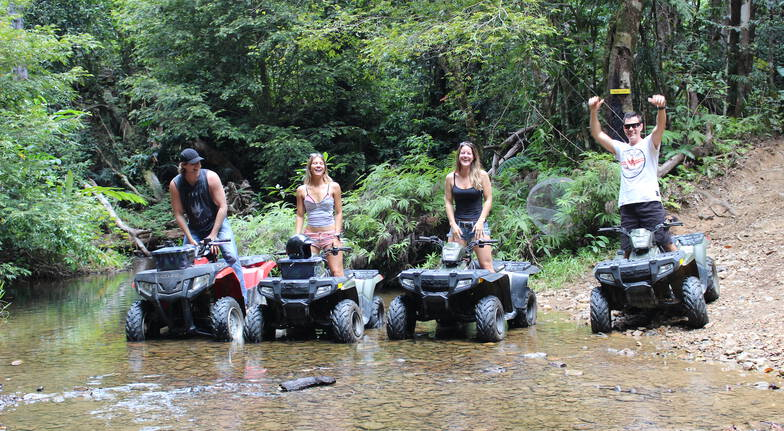 Wildlife and Rainforest Quad Bike Tour - Half Day