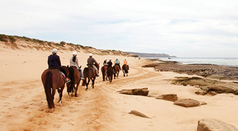 Horse Riding on St Andrews Beach - 2 Hours