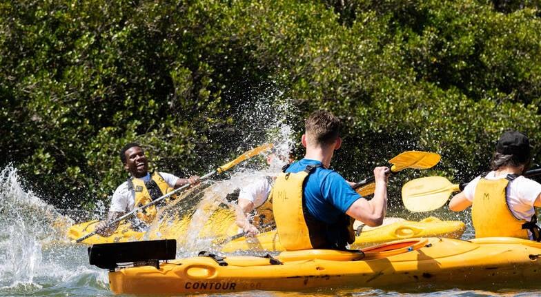 Kayak Tour - Half Day