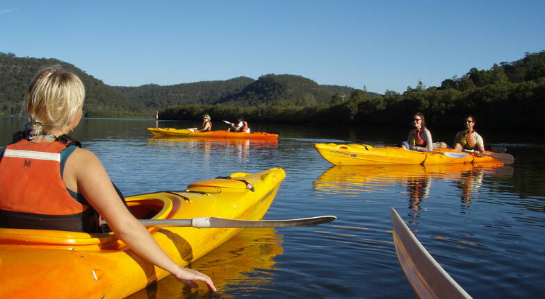 Kayak Tour - Half Day