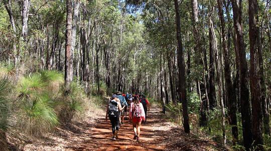 Guided Hiking Tour of Araluen Botanic Park - 2 Hours