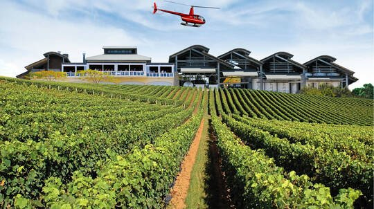 Helicopter Flight and Visit to Sirromet Winery - For up to 3