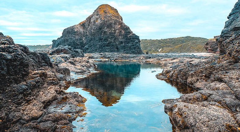 Full Day Mornington Peninsula and Hot Springs Hiking Tour