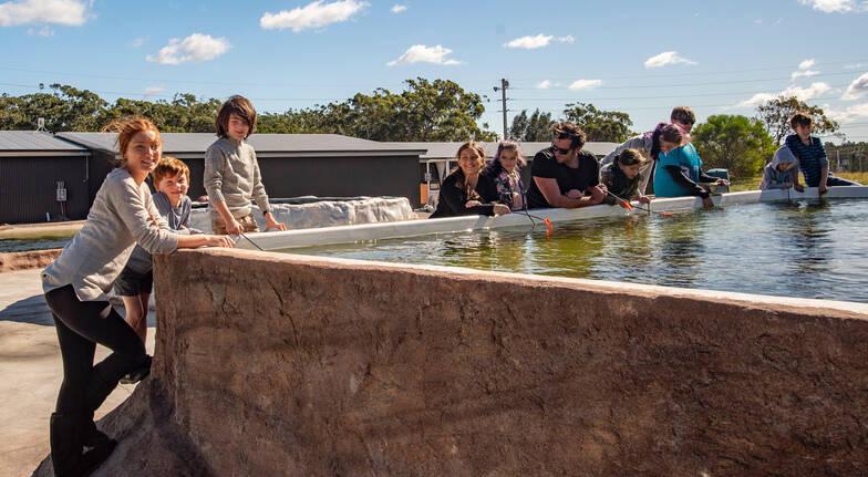 Aquarium Tour with Animal Feeding