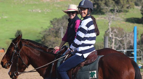 Adult Private Horse Riding Lesson - 60 Minutes