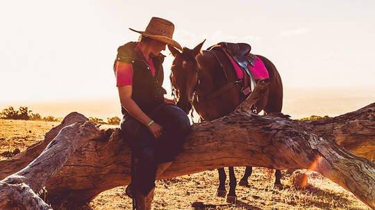 Jarrahdale Horse Trail Ride - 60 Minutes