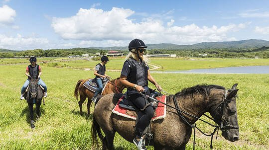 Guided Horse Riding and ATV Tour with Petting Zoo Entry