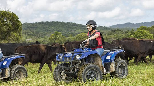Guided ATV Tour with Petting Zoo Entry
