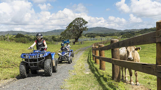 Horse Riding and ATV Tour with Wagyu Charcoal BBQ Lunch