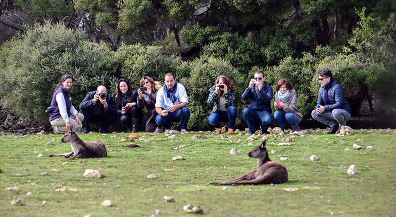 Kangaroo Island Food, Wine and Marine Adventure - For 2