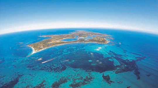 Rottnest Island Half Day Scenic Flight - For 2
