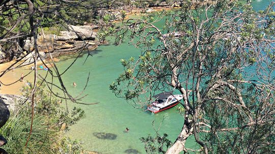 Private Sydney Foreshore Hike and Cruise Experience - For 2