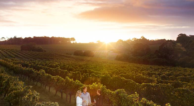 7 Course Tasting Lunch with Winery Tour and Tastings