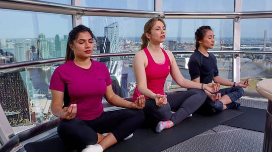Private Vinyasa Yoga in the Sky - 60 Minutes - For 4