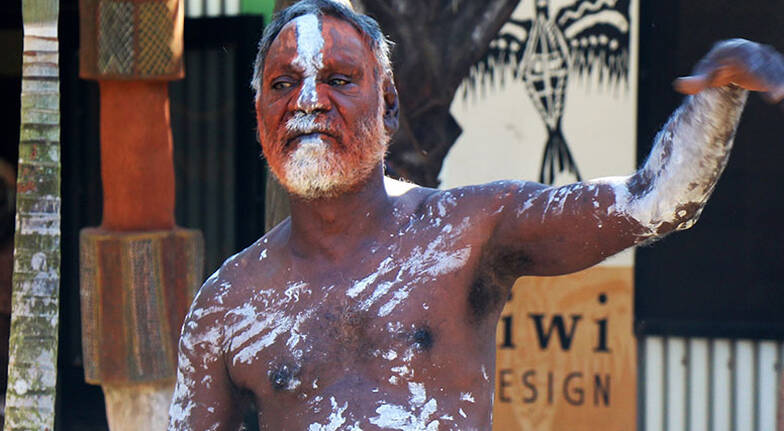 Cruise to the Tiwi Islands with Welcome Ceremony - Full Day
