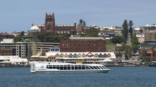 Newcastle Harbour Scenic Cruise with Lunch - 2.5 Hours