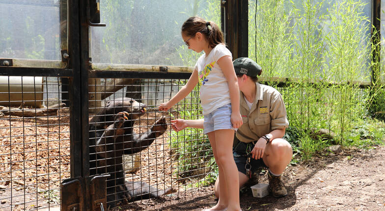 Family Friendly Tour at the National Zoo - Weekday