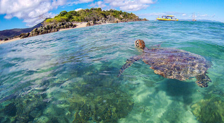 Whitsundays Island Adventure with Snorkelling - Full Day
