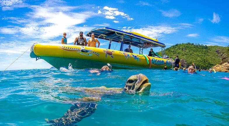 Whitsundays Island Adventure Walking and Swimming - Full Day