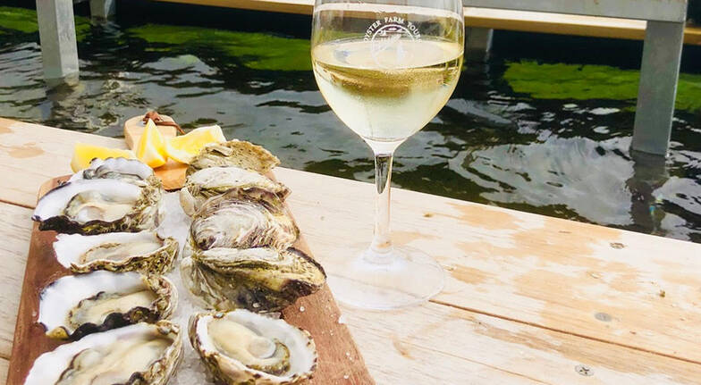 Oyster Farm Tour with Cafe Seafood Platter - For 2