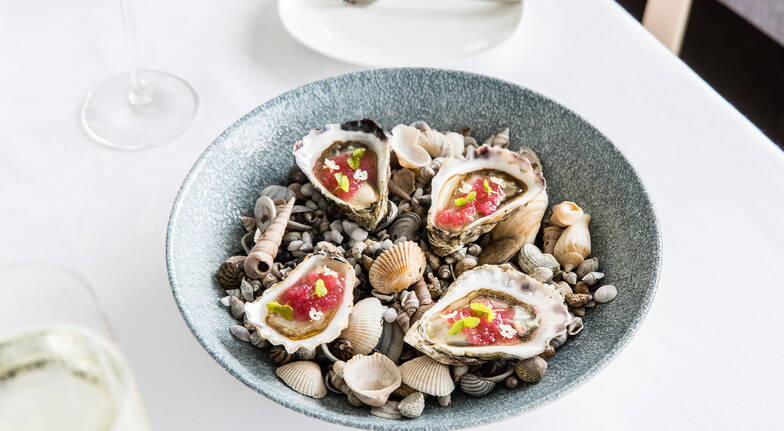 plate of oysters with sea shells