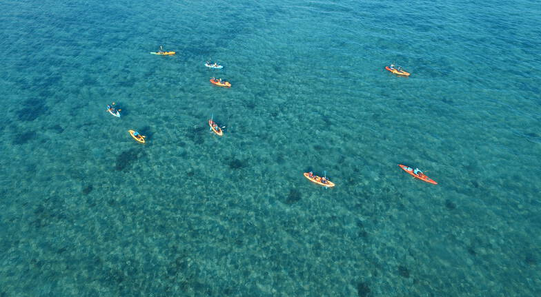 Guided Kayak Tour from Palm Cove to Double Island - Adult