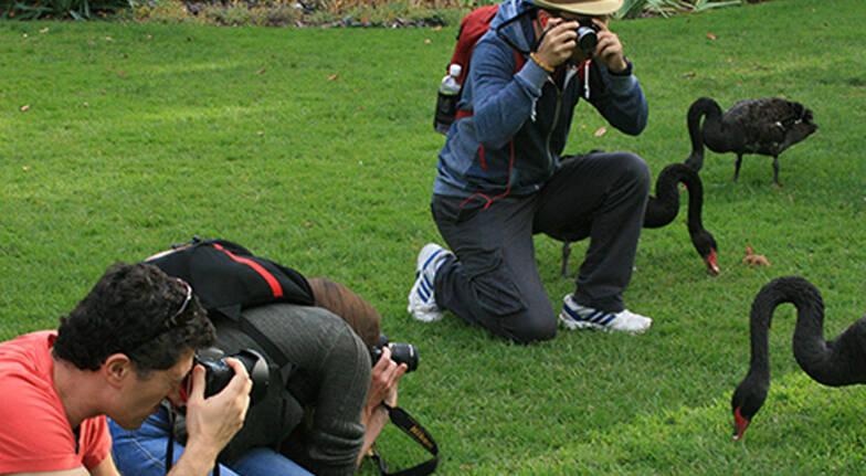 Travel Photography Workshop - Melbourne