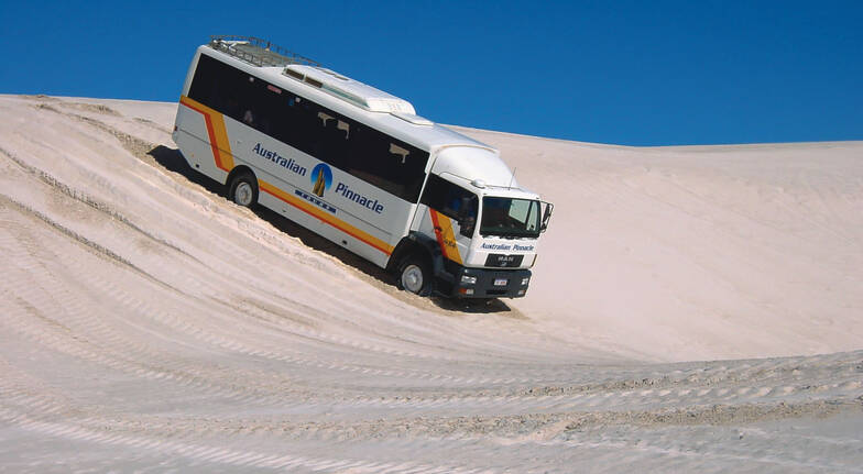 Pinnacles Explorer with Koala Stop, Sand Boarding and 4WD