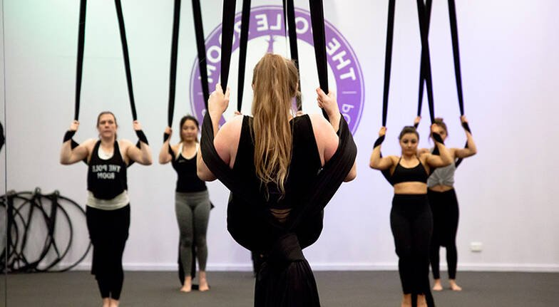 Aerial Silks or Lyra Lesson  60 Minutes