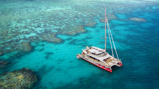 Catamaran Sailing and Reef Snorkel Tour