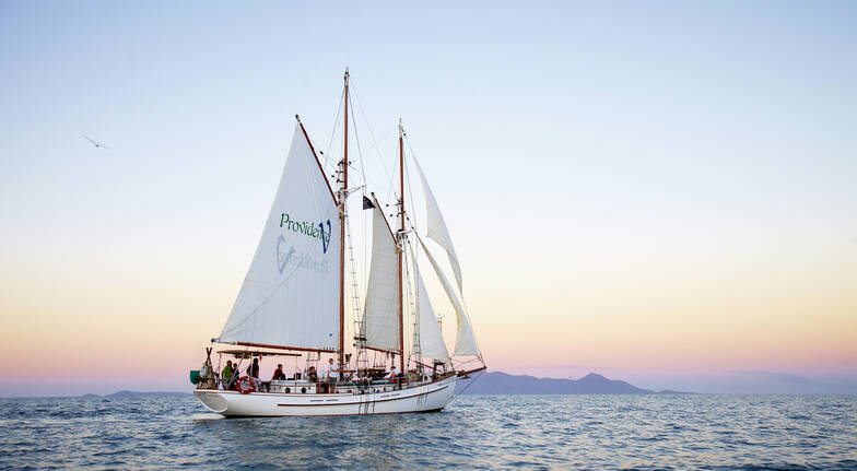 Whitsundays Tall Ship Sunset Sail with Snacks and Bubbles