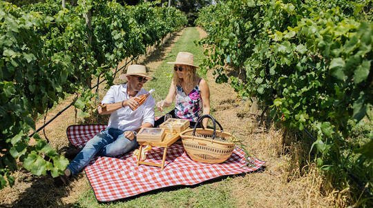 Orange Winery Picnic with Guided Wine Tasting - For 2
