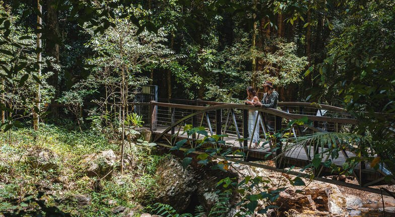 Tamborine Rainforest Nature and Culture Tour with Lunch