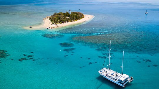 Full Day Cruise to Low Isles with Lunch and Snorkelling