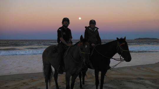 Full Moon Beach Horse Riding - No Experience Necessary