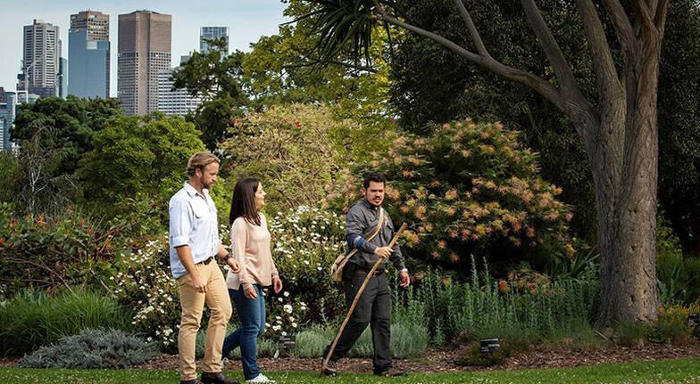 Royal Botanic Gardens Aboriginal Heritage Tour - 90 Minutes