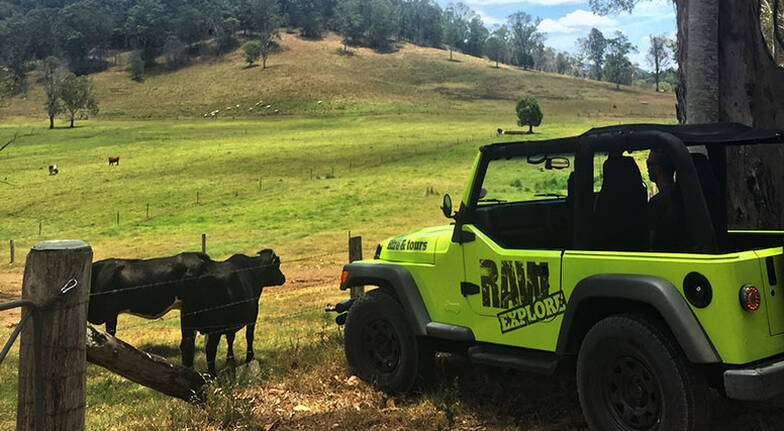 Sunshine Coast 4WD Jeep Hire - Overnight