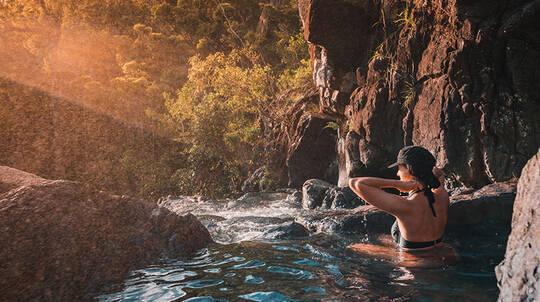 Cedar Creek Falls and Coral Sea Resort Half Day Tour