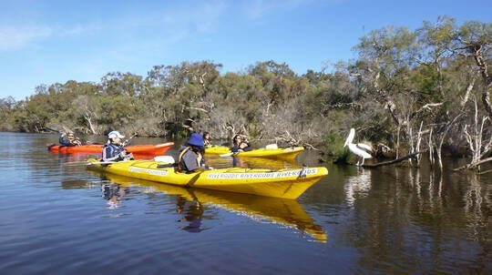 Kayak Tour on the Canning River - Half Day