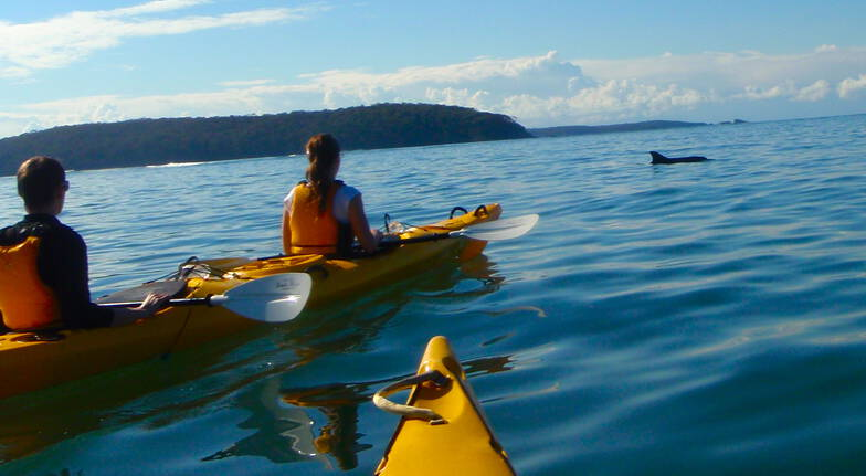 Batemans Harbour Guided Kayak Tour